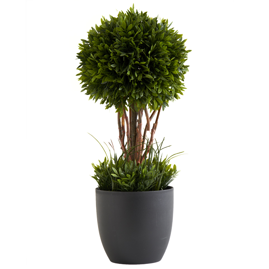 15� Tea Leaf Single Ball Topiary with Black Pot