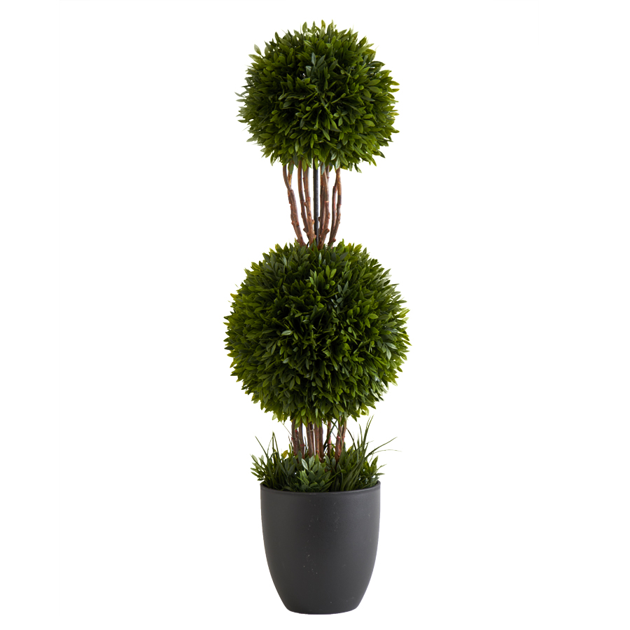 24� Double Tea Leaf Ball Topiary in Pot